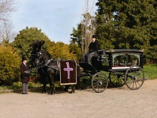 Black horses funeral transport
